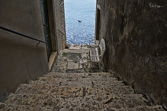 Wouldn't It Be Good (Karnevil) Tags: street sea streets water stairs bench lost alley nikon europe seagull croatia stairway cobblestone peninsula wondering rovigno rovinj dalmatian timeless adriatic alleys adriaticsea dalmatia cobblestonestreets fishingport d610 cobbledstreets istrianpeninsula wouldntitbegood dalmatiancoast istrian nikkershaw northadriaticsea ruvèigno fotoartistry ruveîgno windingalleys ryginion petekrepsphotography
