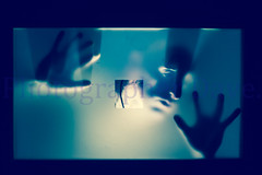Frozen. (Photographer Dave C) Tags: colour beauty canon photography frozen cool bangor creative passion photographerdave 2015 creativephotography creativeart canon400d mymindseye mygearandme