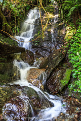 Cascaded Stream, Tadapani-Ghandruk, Annapurna Circuit, Nepal (Feng Wei Photography) Tags: travel nepal color nature water beautiful vertical creek landscape asia outdoor scenic cascades annapurnacircuit annapurna tadapani bagmati annapurnaconservationarea ghanruk
