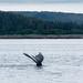 IWR-Juneau-090716 (17)