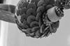 Colgante B&W (cmarga28) Tags: incoloro bola macro decerca abalorio collar perspectiva creativo photography foto detalle mirada nikon digital raw d750 fotografia especial composición artistico