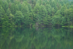 green (peaceful-jp-scenery) Tags: green reflection lake pond nature chino nagano japan       sony 7r a7r ilce7r emount fe24240mmf3563oss