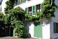 gallery (overthemoon) Tags: stairs schweiz switzerland doors suisse entrance doorway gateway svizzera wisteria vaud nyon romandie notthegcc