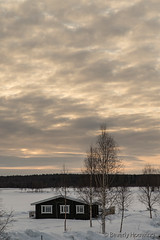 52-Kukkolankoski-10 copy (Beverly Houwing) Tags: sunset silhouette suomi finland frozen lapland kukkola bungalow birchtree tornioriver