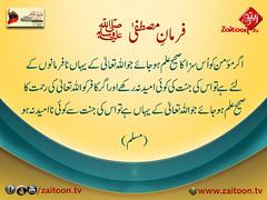 16-5-16) zuyufur rehman (zaitoon.tv) Tags: saw message prophet mohammad islamic quran namaz hadees ahadees