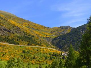 La montagne est jaune