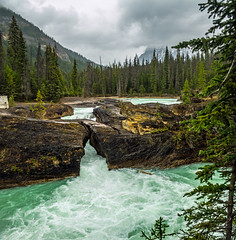 natural bridge on kicking horse river in yoho NP - BC, canada 3 (Russell Scott Images) Tags: canada britishcolumbia bc canadianrockymountains yohonationalpark naturalbridge kickinghorseriver