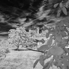 Montfort I (images through a lens) Tags: chateau dordogne france infrared montfort summer sun village walnut