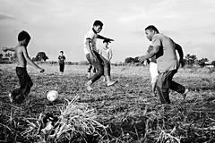 Paddy Field Soccer