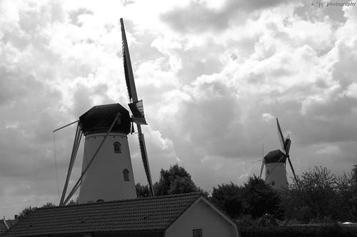 Windmill`s / Molens