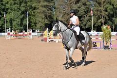 DSC_0975 (2) (ploufjf_64) Tags: paus show jumping chevaux pau 2016