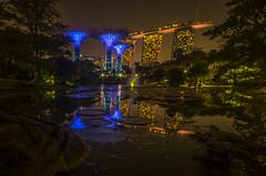 Lily Pond Reflections (alme 27) Tags: gardenbythebay singapore supertree marinabaysands pentax k5d sigmalens reflection night longexposure wonderfull water