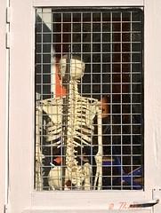 140308 Mes 140902 © théthi   Soon: Halloween (thethi: pls read my first comment, tks) Tags: os squelette mort porte professeur découverte humour mariemont hainaut wallonie belgique belgium bestof2014 setobjetsnew fact50 setmars halloffame setpeople sethainaut ecole fenetre setobjets faves81 fac70