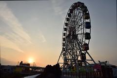 DSC_2978 (ppeng@yahoo) Tags: nikon 台北 2470 d810 兒童新樂園 taipeichildrensamusmentpark