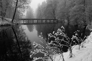 Winter Tranquility