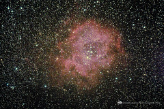 Rosette Nebula (Free Roaming Photography) Tags: sky usa night dark stars star gas nebula astrophotography kelly astronomy nightsky wyoming rosette gaseous darksky monoceros rosettenebula emissionnebula hiiregion caldwell49