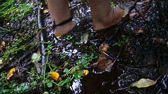 Swamp feet (bfe2012) Tags: boy feet nature wet leaves forest woodland foot freedom toes mud hiking bare indian dirty dirt swamp barefoot barefeet hiker marsh tough muddy marshland ankles anklets barefooted barfuss muddyfeet barefooting dirtyfeet barefoothiking barefooter