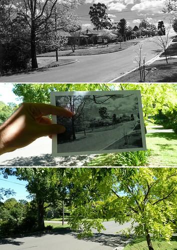 St Ives - Cnr Carbeen Avenue & Mungarra Avenue (1942 & 2015)