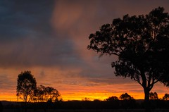 K5_10790 sunset @ Wangaratta (2) (rodgrant1947) Tags: sunset red sky orange brilliant