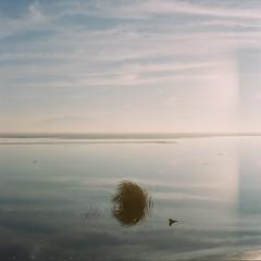 Hunt You Down (α RAINYNEPTUNUS ω) Tags: winter sunset film analog mediumformat utah hasselblad fujifilm analogphotography dreamscape utahlake filmphotography
