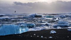 Oh to witness the eternal dance of the elements (lunaryuna) Tags: ocean winter sky panorama seascape storm cold nature beauty season iceland surf waves atlantic shore elements icefloes thesea lunaryuna glacierlake volcanicbeach glacialice bravingthestorm joekullsarlon