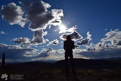Overwatch~ (BlueHusky Photography) Tags: flowers blue arizona cactus sun macro green nature grass clouds cacti cloudy blu wheat stock overcast sunny wallpapers sillo cactusus hsky bluhsky
