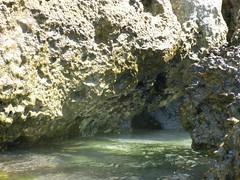 South beach centre groyne (Figgles1) Tags: beach snorkel south snorkeling fremantle groyne southbeach southfremantle p1130228