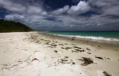 IMG_0063 (De Vil) Tags: newzealand northland karikaripeninsula canonef1635mmf28liiusm meritabeach
