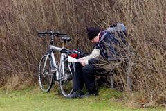 Taking a break with yesterday's news (osto) Tags: bike bicycle denmark europa europe sony bicicleta zealand bici scandinavia danmark velo vlo slt rower cykel a77 sjlland osto alpha77 osto february2015 fietssykkel