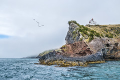 Taiaroa Head (Ian@NZFlickr) Tags: ocean mouth pacific harbour head nz cape otago dunedin colony albatross taiaroa