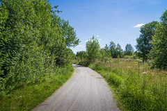 Countryside (samiKoo) Tags: road blue light summer sky sunlight green nature canon photography countryside photo naturallight 6d naturephotography 24105mml
