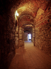 Lipowiec (gabunzel) Tags: castle zamek polska poland małopolska lipowiec babice medieval średniowiecze architektura architecture