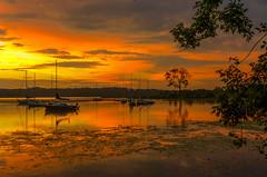 Sunrise.... (tomk630) Tags: virginia nature sunrise boats golden river potomac