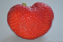 Strawberry Heart (n.intveen) Tags: red strawberry heart herz erdbeere liebeist liebegehtdurchdenmagen