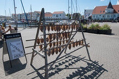 20160720 DSC_2229 Sby Havn (quart71) Tags: danmark havn nordjylland sby denmark fish fisk harbor