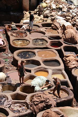 tannery (nickylyf) Tags: morocco fes
