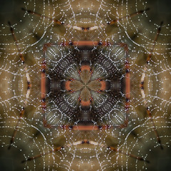 Spiderweb Kaleidoscope (Anne Worner) Tags: kaleidoscope square pattern spidersilk droplets four fallcolors anneworner texture symmetry symmetrical