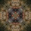 Spiderweb Kaleidoscope (Anne Worner) Tags: kaleidoscope square pattern spidersilk droplets four fallcolors anneworner texture symmetry symmetrical