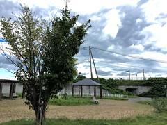 park (uki_cafe) Tags: park nature japan hokkaido green tree sky cloud summer landscape