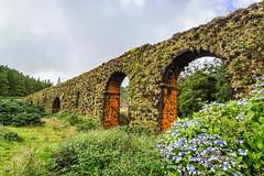 Muro das Nove Janelas (thaisa1980) Tags: azores novejanelas portugal sanmiguel somiguel acueducto aqueduct isla island moss muro musgo vegetacin vegetation