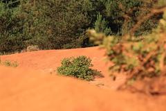 IMG_2748Lu (patrickpieknyj) Tags: paysage lubron coloradoprovencal