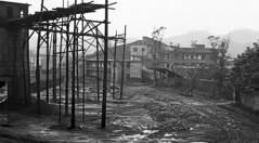 brick works & diesel ng (peter.velthoen) Tags: rain pooringrain bricksworks ilfordfp4 blackandwhite fog damp wet monochrome dieselnarrowgauge negla009 day lastday steenfabriek