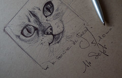 Jazzy , toujours aussi mignonne comme modle....quoique le stylo lui fasse bien envie... (peu prsente...ailleurs !) Tags: jazzy croquis portrait chat singapura 7mnenviron croquisaustylobille dessin