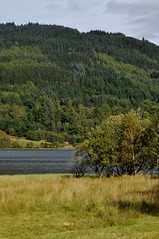 Loch Achray (robert55012) Tags: queenelizabethforestpark scotland trossachs