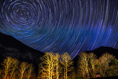Polaris Above Austria ([ raymond ]) Tags: astrophotography austria night obertraun stars timestack trees img2971 trails startrails europe