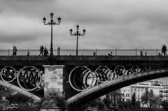 Paseos por Triana (J Fuentes) Tags: flickr save sevilla puente bridge triana blancoynegro blackwhite bw people nubes cielo sky clouds farolas circulos guadalquivir