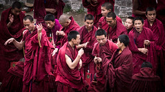 debate (Redust) Tags: tibetanbuddhism monks labrtngmonasty faith religion gannan xiahe culture people tibetanmonks debat