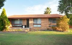 115 Maize Street, Tenambit NSW