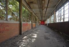 Monkey Bars (jgurbisz) Tags: jgurbisz vacantnewjerseycom abandoned nj newjersey industrial nawcad navalairwarfarecenter trenton ewing decay