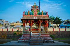 Sacred Lily Pond of Parthasarathy Temple (Vijay Ram) Tags: yaali vishnu chennai parthasarathy temple art architecture handmade artwork pallava chola photo border tank pond sacred lilypond triplicane tiruvallikeni templepond hindu templetank outdoor mandapam
